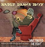 Picture Of The Guardian presents Badly Drawn Boy (Promo CD)