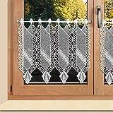 SeGaTeX home fashion Landhaus-Stickerei-Scheibengardine Farah aus Echter Plauener Luftspitzen-Stickerei Panneau in weiß
