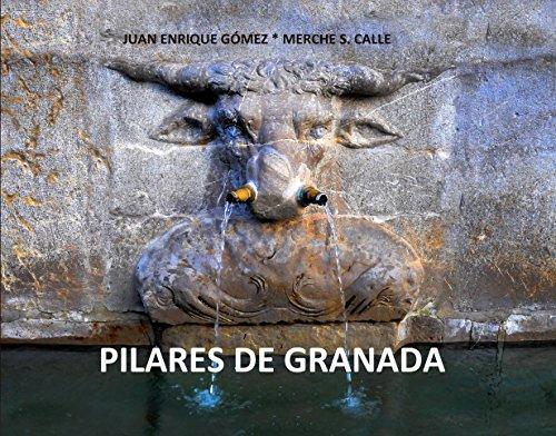 Pilares de Granada (Descubrir Granada nº 1) por Juan Enrique Gómez