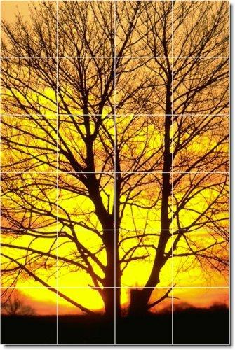 PUESTAS FOTO MURAL DUCHA AZULEJO 32 X 121 92 CM 10 CON (24) 8 X 8 AZULEJOS DE CERAMICA