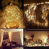 Lichterkette Außen, HUIHUI Wasserdicht 1M 10 LEDs Kupferdraht Lichterkette batteriebetrieben für Party, Garten, Weihnachten, Halloween, Hochzeit, Indoor & Outdoor Decor (Beige,One size)