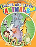 Colour and Learn - Animals