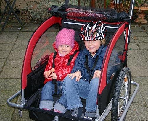 RED LOON TJ2 Kinderanhänger + Jogger für 2 Kinder NEU - 5