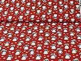 Baumwollstoff Frosty Friends, von R. Kaufmann, Waschbären,