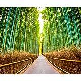 decomonkey Fototapete Wald Bambus 350x256 cm XXL Tapete Wandbild Bild Fototapeten Tapeten Wandtapete Allee Natur