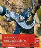 Das große BLV Handbuch Schnitt: Obst- und Ziergehölze  Stauden  Rosen