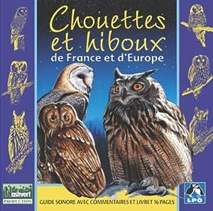 Chouettes et hiboux de France