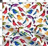 Vögel, Wasserfarben, Natur, Kolibri, Neuheit, Spatz Stoffe