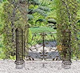 Stahl Pforte Tor Eingang Gartenpforte Tauntor Gartentor Gartenzaun Antik Optik