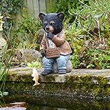 Collection bassin. Bernie Bear...
