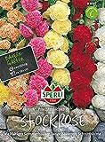 Sperli Stockrosen Prachtmischung   vielfälltiger Sommerblüher   zweijährig   Päckchen Samen