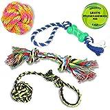 Golden Pets Hundespielzeug 4-teiliges Set | Ideal für kleine bis mittelgroße Hunde und Welpen | Aus natürlichen hochwertigen Baumwollfasern | + Gratis Pflegehandbuch