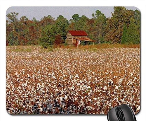 Carolina Cotton (North Carolina Cotton Field Mouse Pad, Mousepad (Fields Mouse Pad))