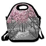 Girls Boys Food Lunch Tote NYC Blossoms In Central Park Cherry Bloom Trees Forest For Adults, Girls, And Teen Girls Picnic School Work Portable Reusable Handbag Bags Boxes Lunchbox Outdoor Totes