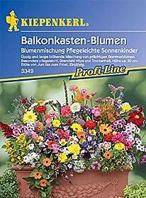 von Kiepenkerl(62)Neu kaufen: EUR 3,294 AngeboteabEUR 3,13