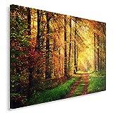 Feeby, Wandbild - 1 Teilig - 80x120 cm, Leinwand Bild Leinwandbilder Bilder Wandbilder Kunstdruck, Wald, Natur, BRAUN