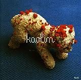 Songtexte von Kaolin - Allez