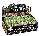 Unbekannt Dino Ei zum Ausgraben, 6 Stück