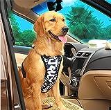 LOHUA Haustier Hund Auto Sicherheit Brustgurt + Haustier Hund Auto Sicherheitsgurt , Blue