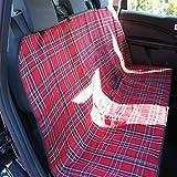 Auto-Rücksitz