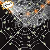 LlorenteRM Halloween Spinnennetz Super Stretch Cobweb Kleine Leuchtende Spinne Outdoor Indoor Set Halloween Dekoration Party Supply Set