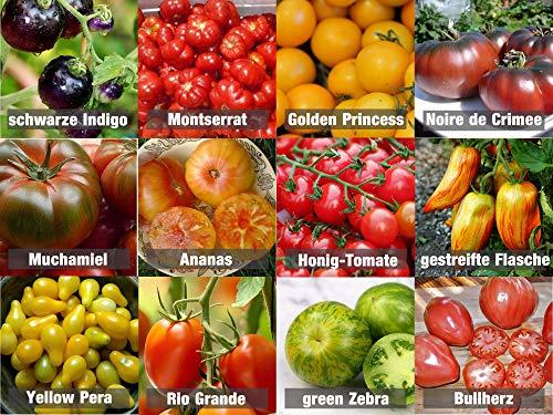 Tomaten-Mix/Samen-Set 12 x 10 Samen 100{b04019e9afb77a9d468975f89503dd8f1c54345f25915974e9867b61128e55fa} Natursamen aus Portugal seltene Sorten mit sehr hoher Keimrate Bullenherz Noiree de Crimee Cocktail-Tomaten
