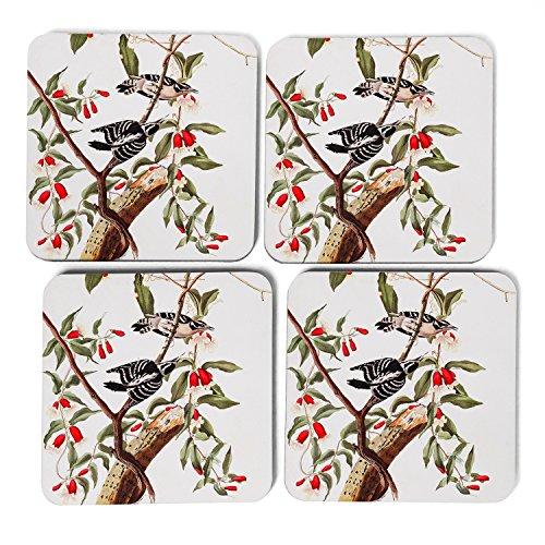 big-box-art-john-james-audubon-downy-woodpecker-coasters-multi-colour-9-x-9-cm-set-of-4