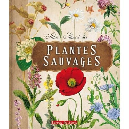 Atlas Illustre des Plantes Sauvages