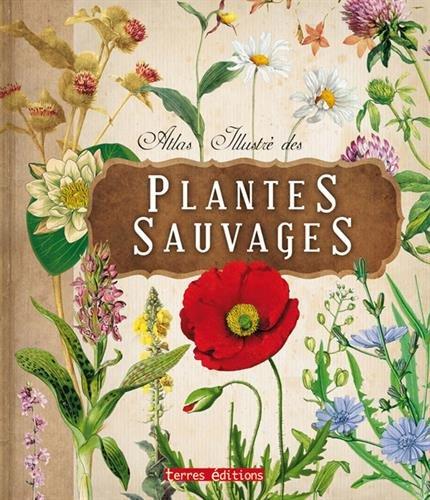 Atlas Illustre des Plantes Sauvages par Collectif