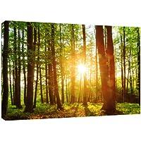 MOOL - Tela da parete con stampa di immagine tramonto nella foresta in vernice impermeabile su cornice in legno, pronta da appendere, 81 x 56 cm