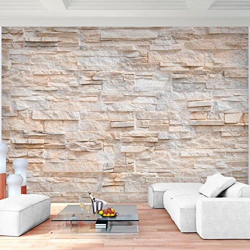 Fototapete Steinwand 3D Effekt 396 x 280 cm Vlies Wand Tapete ...
