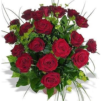 rosenpaket 40 rote rosen 40 cm ohne bindegr n garten. Black Bedroom Furniture Sets. Home Design Ideas
