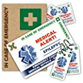 EPILEPSY In Case of Emergency (I.C.E.) Card Pack with Key Rings & Stickers from ICEcard. Wallet size card with WRITABLE reverse to carry Emergency Contact & Medical / Medication Information by ICEcard