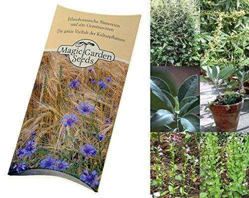 Saatgut Set: 'Räucherkräuter', 4 duftende und wohltuende Pflanzen zum Trocknen und Räuchern, Samen in schöner Geschenk-Verpackung