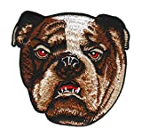 Hund Bulldogge Kopf gestickt Aufnäher Bügelbild Patch Applikation