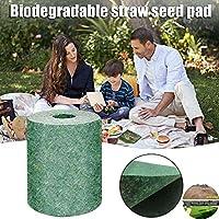 XVBABY Green Grass Seed Mixture Mat Roll Biodegradable Mat Fertilizer Garden Picnic 20x300cm(Not Include Seed) (1 Pcs) 2 Pcs