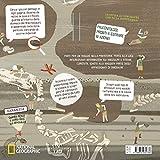 Alla-scoperta-del-mondo-dei-dinosauri-Ediz-a-colori