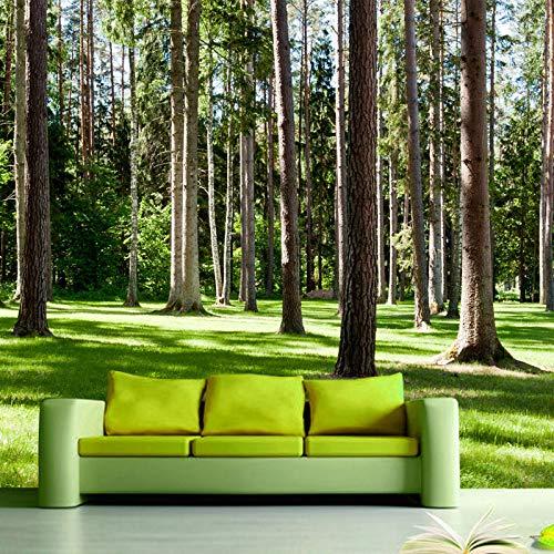 GMAYNBZ Wandbild Tapete Natur Landschaft Grün Baum Wälder Sonnenschein Fototapete Tapete Wohnzimmer 3D Vlies Tapeten