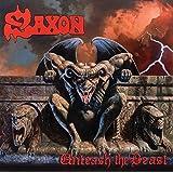 Unleash the Beast [Vinyl LP]