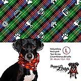 Doggy Loop - Hundeschal grün in L
