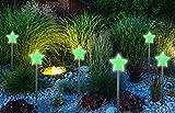 Patio Eden – Glow Pierre Jardin Piquets – Lot de 10 – en forme d'étoile …