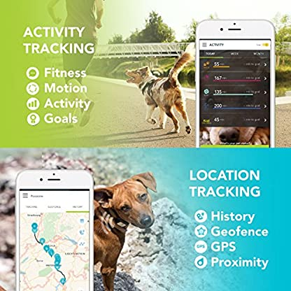Pet GPS Tracker for Dogs and Cats by Kippy | GPS Monitoring & Activity Monitor for Dogs, Cats and more | Simply attach… 3
