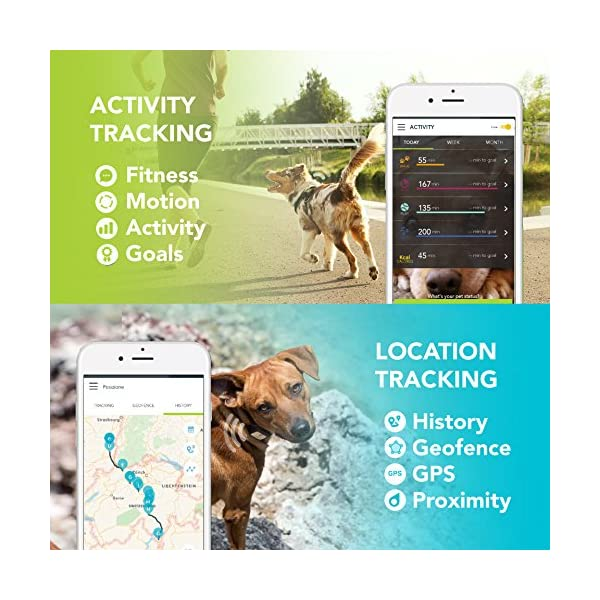 Kippy VITA - GPS Tracker and Activity monitor for pets - GPS locator for dogs and cats 3