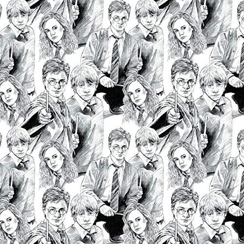 Harry Potter Stoff, 100% Baumwolle VISF91 Harry & Friends (Harry-potter-stoff)