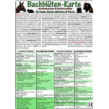 Bachblüten-Karte für Hunde, Katzen, Kleintiere und Pferde - Verhaltensweisen und Gemütszustände