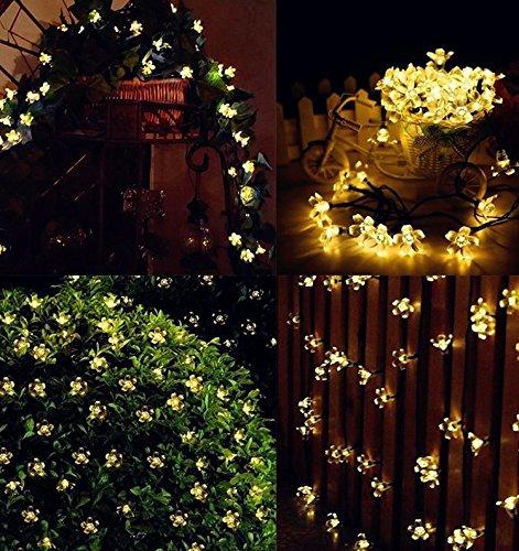 Naisidier 50LED Lichterkette 7m Licht Solar Kette Kleeblatt Lampen von Blumen für Dekoration Weihnachten, Party, Hochzeit, Geburtstag, Haus, Garten, Spät Warmweiß -