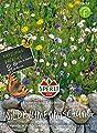 ca. 10 m² Wildblumenmischung Blumenwiese und Kräuternwiese (ohne Gras) Blumenmischung Blumensaat von Sperli auf Du und dein Garten