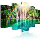 murando - Bilder 200x100 cm Vlies Leinwandbild 5 TLG Kunstdruck modern Wandbilder XXL Wanddekoration Design Wand Bild - Wasserfall Regenbogen c-A-0071-b-n