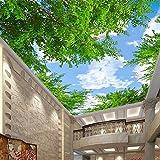 MEILI Blauer Himmel und weiße Schlafzimmer Wohnzimmer Decke Decke Tapete Hotel Restaurant 3D Wallpaper große Wandbilder Decke , D