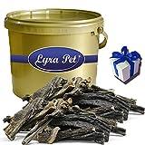 Lyra Pet 5 kg Rinderpansen Dog Premium Hundefutter Rind im Eimer Gold + Geschenk